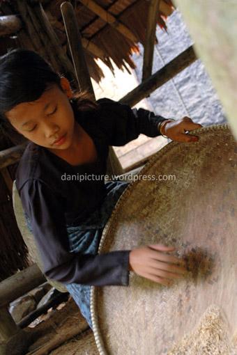 Seorang anak perempuan Baduy memisahkan padi yang ditumbuk