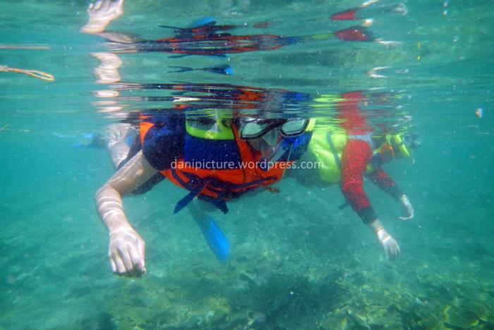 Snorkeling tentunya merupakan tujuan utama melancong ke Pulau Pari.
