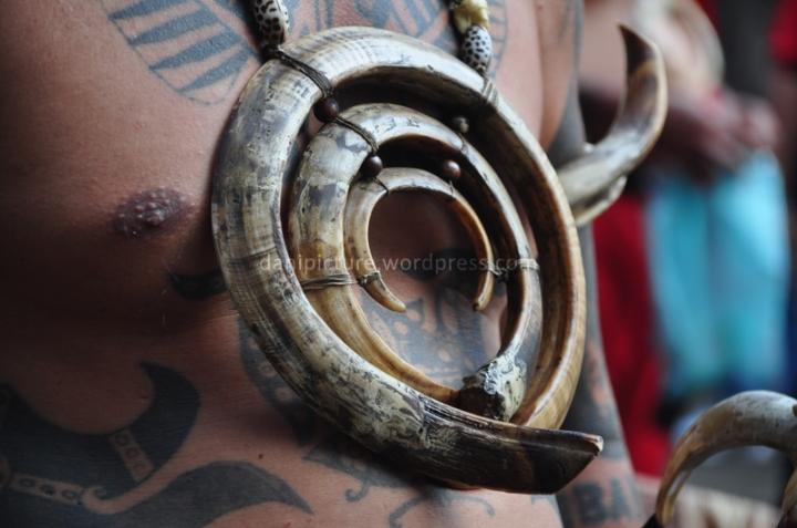 Taring babi, adalah salah satu aksesoris yang dipakai oleh kaum laki-laki Dayak.