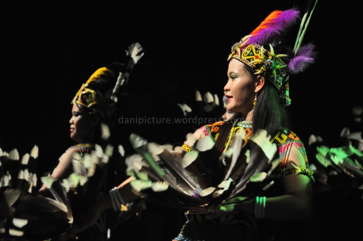 Pertunjukan tarian khas Dayak di panggung pertunujukan Pekan Budaya Dayak 2013