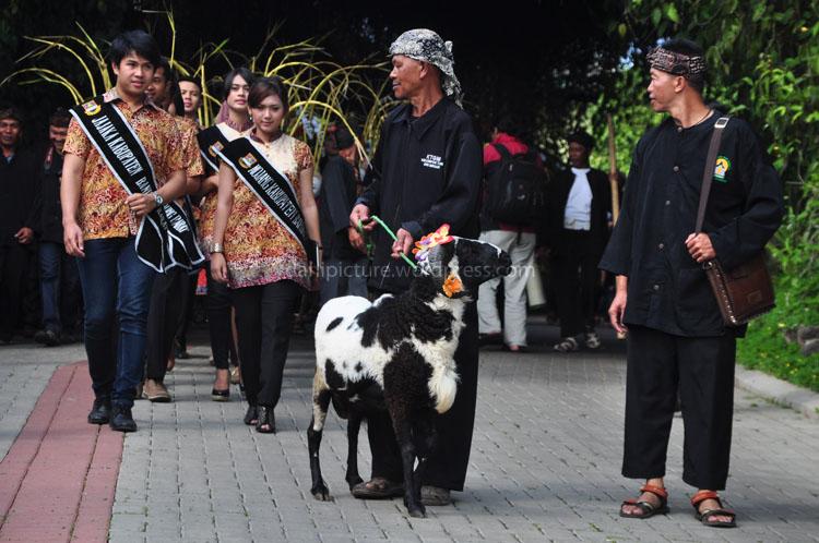 Mojang Jajaka Kabupaten Bandung Barat juga ikut serta dalam acara Cihideung Festival.